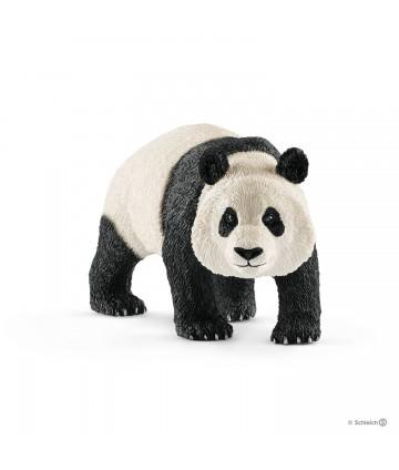 Panda géant mâle