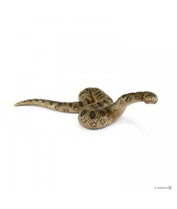 Anaconda géant