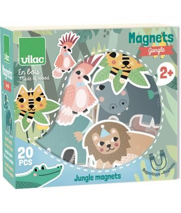 Magnets Jungle